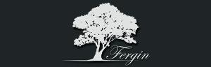 Fergin1024-